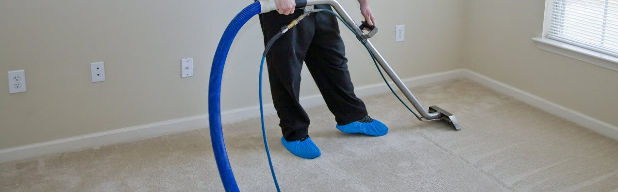 how water extraction steam carpet cleaning specialists